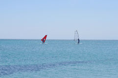 windsurf Стоковое Фото