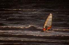 Windsurf. On the sea at the sunset Stock Images