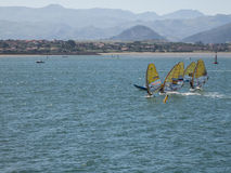 Windsurf in the bay of Santander, Spain. Windsurf champioship in the bay of Santander, Spain Stock Images