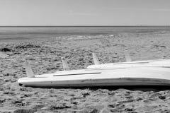 Windsurf las tablas en la arena Imágenes de archivo libres de regalías