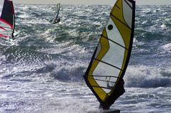 Windsurf in Menorca stock afbeeldingen