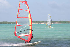 Windsurf's up!. Windsurfers in tropical bay royalty free stock photography