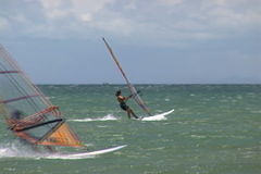 Windsurf stock video footage