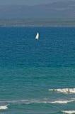 Windsurf w morzu śródziemnomorskim Fotografia Royalty Free