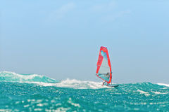 Windsurf in the waves Stock Images