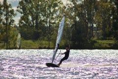 Windsurf y el árbol de eucalipto Fotografía de archivo
