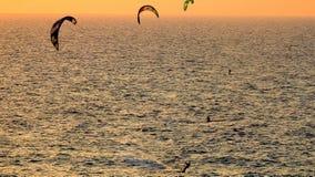Windsurfe no verão fotografia de stock royalty free