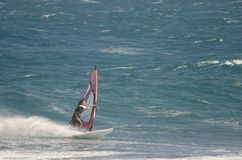 Windsurfer που πλέει στη θάλασσα Στοκ εικόνα με δικαίωμα ελεύθερης χρήσης