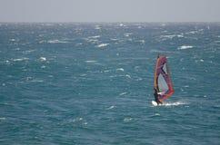 Windsurfer που πλέει στη θάλασσα Στοκ φωτογραφίες με δικαίωμα ελεύθερης χρήσης