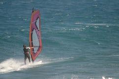 Windsurfer που πλέει στη θάλασσα Στοκ Εικόνες