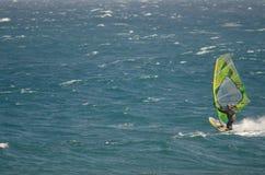 Windsurfer που πλέει στη θάλασσα Στοκ φωτογραφία με δικαίωμα ελεύθερης χρήσης