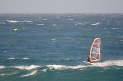 Windsurfer в море Стоковые Фото