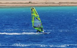Windsurfer на доске под ветрилом двигает на скорость вдоль поверхности моря, на фоне волн Стоковая Фотография RF