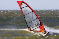 Windsurfer royalty free stock images