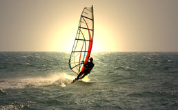 Windsurfer Photographie stock