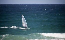 windsurfer Obraz Royalty Free