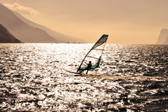 Windsurfer Zdjęcia Stock