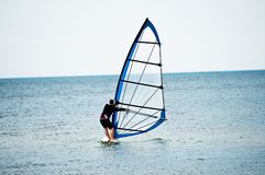 Windsurfer Stock Photography