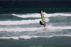Windsurfer in action Royalty Free Stock Photography