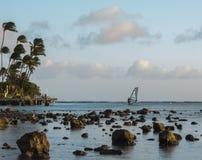 Windsurfer bij Zonsondergang Royalty-vrije Stock Afbeeldingen