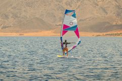 The windsurfer on a board under a sail moves on a calm sea at a low speed, royalty free stock images