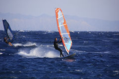 Windsurfer in Dahab Royalty Free Stock Photo