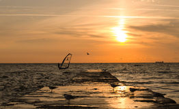 Windsurfer on the dawn Royalty Free Stock Image