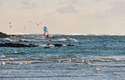 Windsurfer in den Wellen. Stockbild