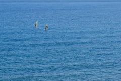 Windsurfer due lontano sull'oceano, aereo Fotografia Stock