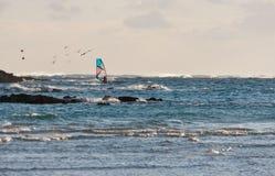 Windsurfer en ondas. Imagen de archivo