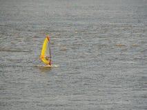 Windsurfer en un entrenamiento del río en la luz del sol fotografía de archivo