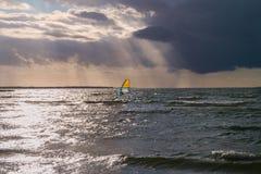 Windsurfer im Meer am Abend Stockbilder
