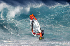 Windsurfer and large wave. Professional windsurfer with large wave in background Royalty Free Stock Photo