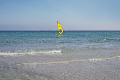 Windsurfer. Stock Images