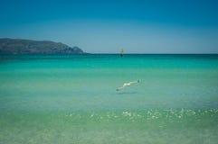 Windsurfer na turkusowej wodzie, Elafonisi menchia wyrzucać na brzeg Grecja, Fotografia Royalty Free