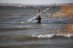 Windsurfer is preparing to start. Windsurfer in a dry suit is going through the problematic cane and woody area to set off to high wind zone Royalty Free Stock Photo