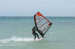 Windsurfer rides in the Black sea. Anapa, Russia royalty free stock photo