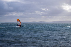 Windsurfer. Sailing the blue ocean Stock Photography