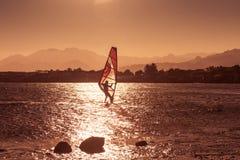 Windsurfer sailing in sea at sunset Royalty Free Stock Image
