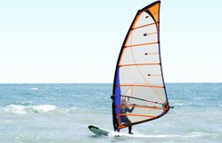 Windsurfer on the sea. In the afternoon Royalty Free Stock Image