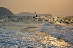 Speed windsurfer at sunset Stock Image