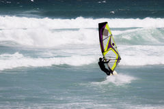 Windsurfer w akci blisko Kapsztad Obraz Stock