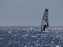 Windsurfer royalty free stock image
