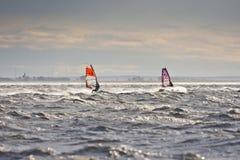 Windsurfers в шторме Стоковые Изображения RF