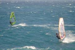 Windsurfers плавая в море Стоковая Фотография RF