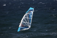 windsurfers Photographie stock