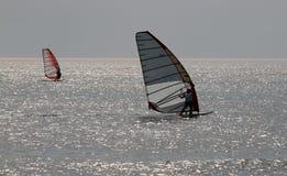Windsurfers royalty free stock photo