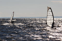 Windsurfers Royalty Free Stock Images