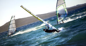 Windsurfers Royalty Free Stock Image