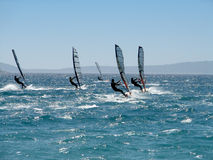 Windsurfers. On strong wind and waves Stock Image